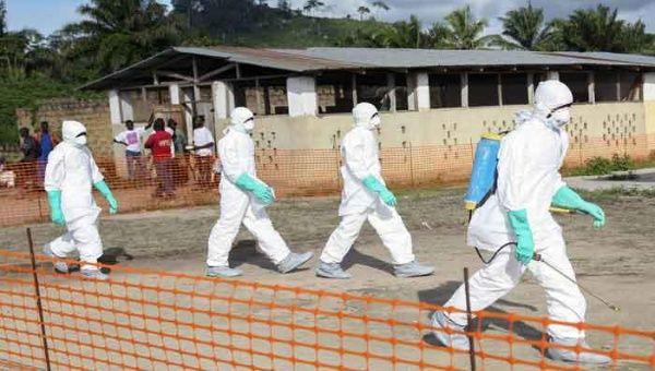 La epidemia ha desatado gran angustia en Europa y Asia. (EFE)