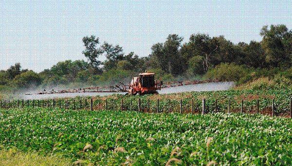 Brasil Busca Prohibir Herbicida De Monsanto Roundup Por Su