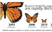 The winter hibernation areas are the most accurate measure of population level for the Monarch.