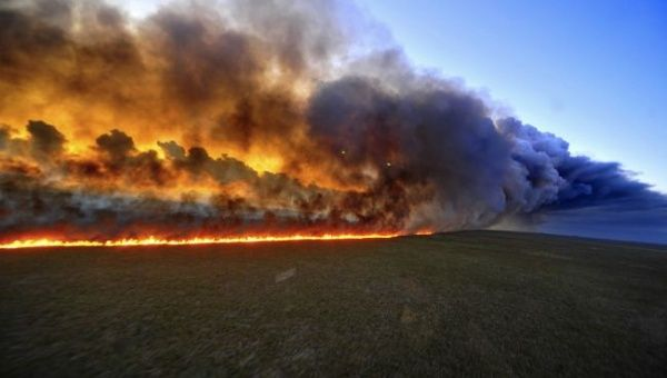 Brazil experiences sharp rise in forest fires. (Photo: AFP