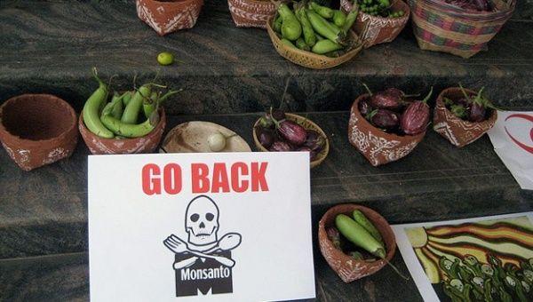 Los 12 productos más nocivos de Monsanto  Monsanto.jpg_1718483346