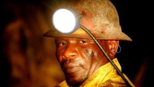 gold miner news