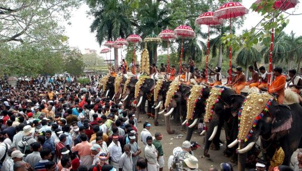 an analysis of the thrissur pooram The economy of thrissur is largely dependent on industries,  the cluster have all the state-of the-art facilities for testing and analysis,  thrissur pooram.