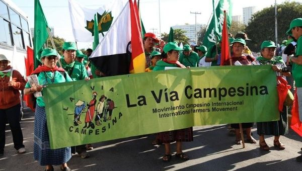 Grassroots activists participate in a massive La Via Campesina march in 2010.