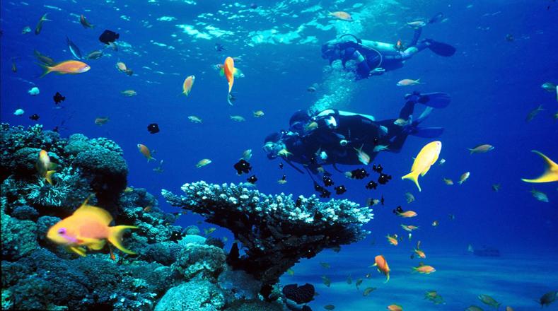 Ley para los Océanos, creada por la Convención de las Naciones Unidas en 1994, establece la solución obligatoria de controversias, para todas las actividades que se llevan a cabo en los océanos y los mares.