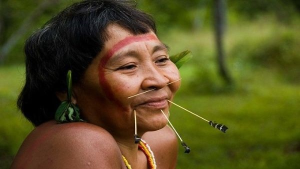 nativos