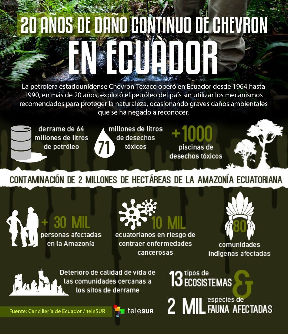 Chevrons De La Terrasse En Palette Europe: Daños De Chevron En Ecuador