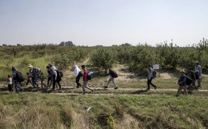 Refugees near Hungarian border.