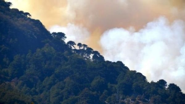 Over 900 forest fires were active in Brazil Sunday.