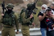 Israeli forces have killed 24 Palestinians and injured over 1,990 since the beginning of October.