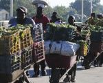 Haitian merchants cart their vegetables across the border into Dajaban for market day.