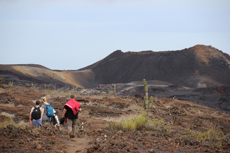 Not all of the Galapagos is so lush. The crater-riddled landscape around Isabella island