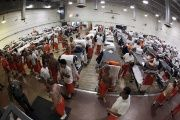 Inmates walk around a gymnasium where they are housed due to overcrowding at the California Institution for Men state prison in Chino, California, June 3, 2011.