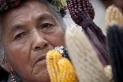 A Mexican woman protests against genetically modified corn in Mexico City as part of a larger national movement against Monsanto.