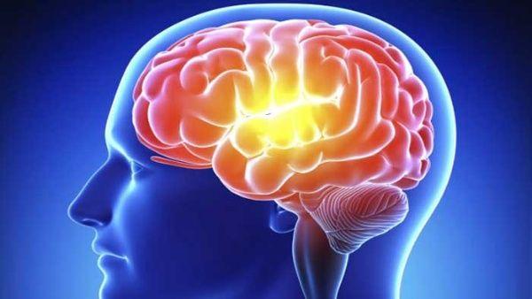 Cerebro humano olvida intencionalmente para ahorrar energía ...