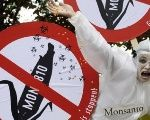 A demonstrator protests Monsanto.