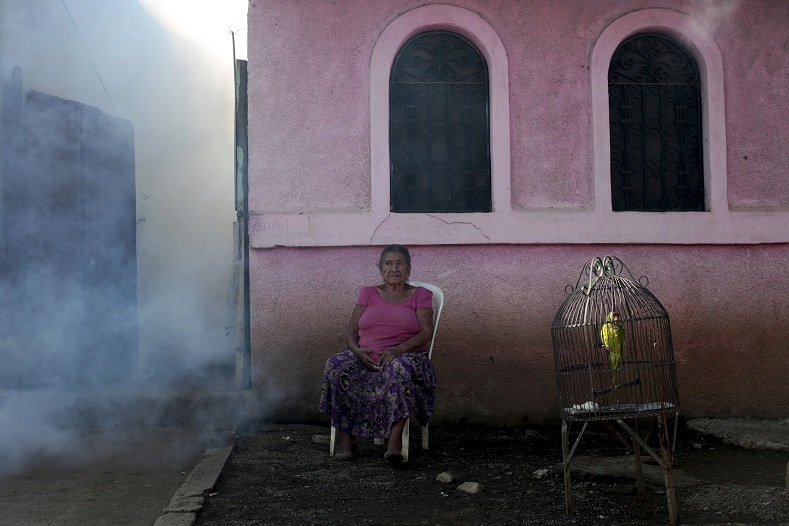 A woman sits outside her house while a health ministry worker fumigates to kill mosquitoes during a campaign against dengue and chikungunya and to prevent the entry of Zika virus in Managua, Nicaragua Jan. 26, 2016.