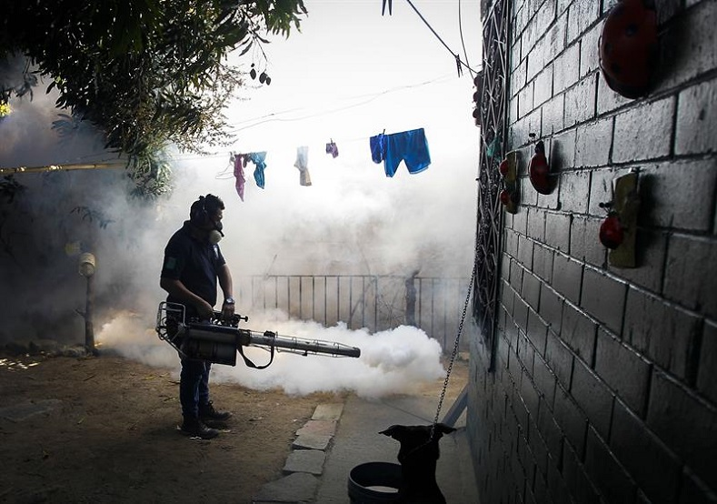 An employee from the El Salvadorian Health Ministry fumigates the patio of a house in the city of Soyapango, 6 kilometers east of San Salvador, Jan. 21, 2016.