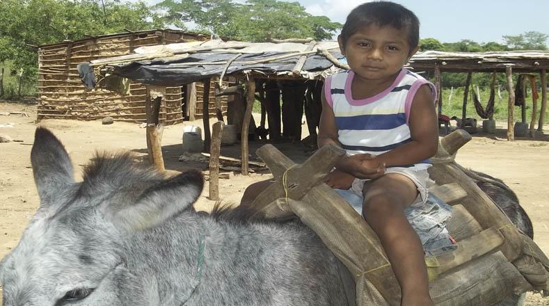 A pesar del hambre, los niños Wayuú deben salir en la búsqueda de agua.