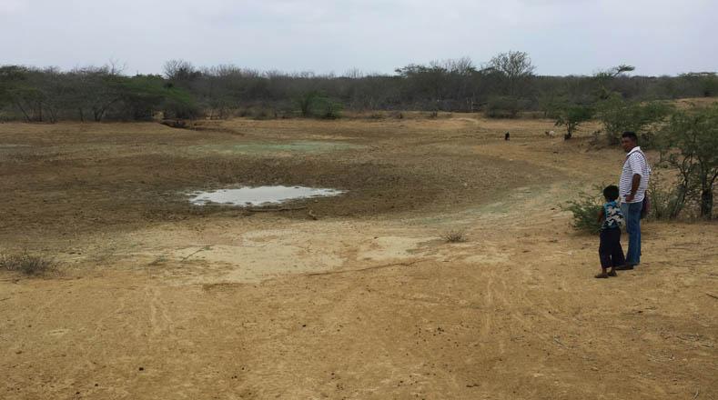 La sequía en la Guajira ha afectado a los cultivos y la actividad agropecuaria en la zona.
