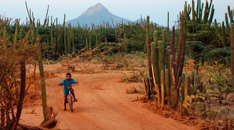 Los niños y niñas Wayuú tienen que hacer frente al hambre y la sequía en la Guajira colombiana.