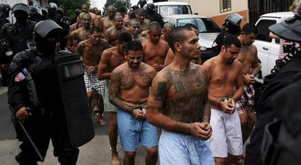 the issue of gang violence in el salvador The many victims of el salvador's gang violence the power of gangs in el salvador that may finally root out the underlying drivers of violence.