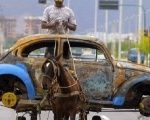 A Brazilian man transports on his horse-drawn cart the remains of a Volkswagen Beetle that caught fire and was abandoned by its owner.