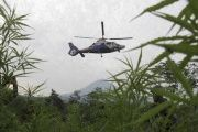 A police helicopter hovers over a marijuana field during an operation to destroy the illegal marijuana plants in Seulimeum, Aceh Besar, Aceh province, Indonesia April 1, 2016.