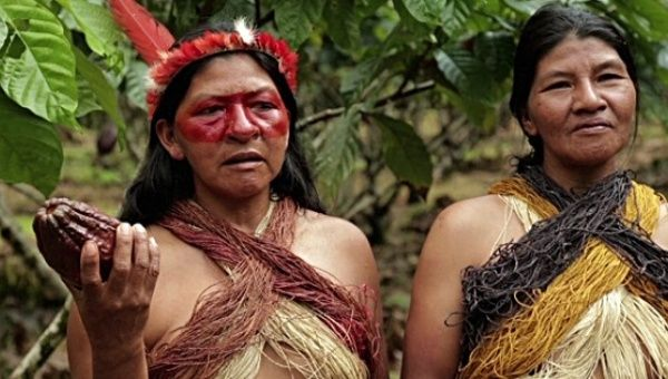 Far from where the Paris COP21 summit took place ignoring the rights of original peoples, Indigenous tribes of the Amazon take action to preserve their local environment.