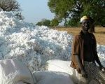 Burkina Faso is the top cotton producer in Africa.