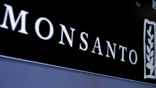 Monsanto is displayed on a screen where the stock is traded on the floor of the New York Stock Exchange (NYSE) in New York City, U.S.