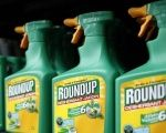 Monsanto's herbicide glyphosate was believed to be used during the errant spraying.