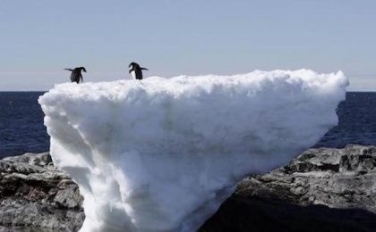 Two Adelie penguins stand atop a block of melting ice on a rocky shoreline at Cape Denison, Commonwealth Bay, in East Antarctica.