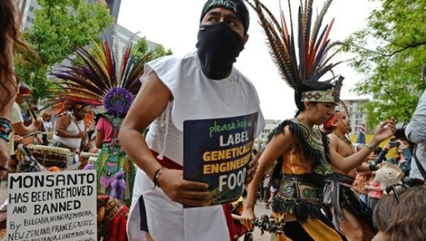 Native American dancers protest against agribusiness giant Monsanto in Los Angeles on May 25, 2013.
