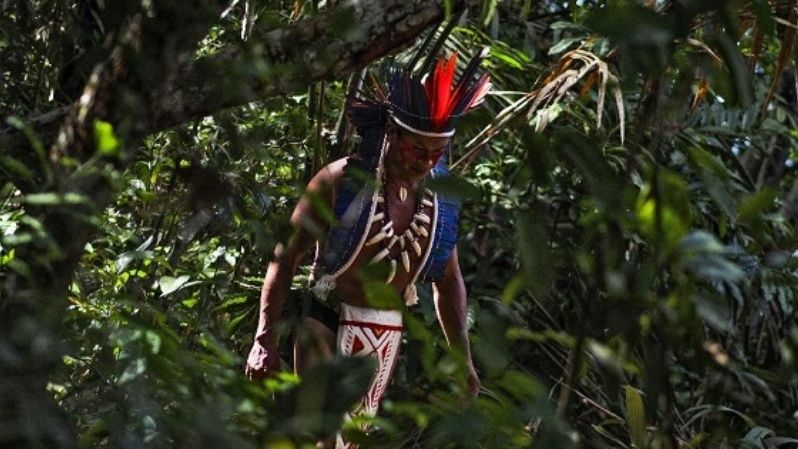 Traditional indigenous lands tend to be particularly precious because they make up less than one quarter of the Earth