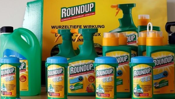 Monsantos Roundup Weedkiller Atomizers Are Displayed In The Company Headquarters Morges