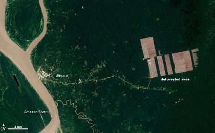 Deforestation of the Peruvian Amazon Rainfore