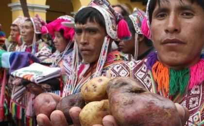 Peruvian campesinos hold native potatoes during a protest against GMO seeds and policies they argue undermine their rights.
