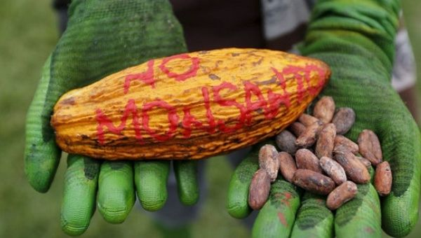 For deccades Monsanto has put profits over human and environmental rights