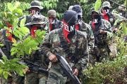 The members of the ELN will transition into a political entity in Colombia if a deal is reached with the government.