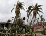 A girl walks on a tree damaged by Hurricane Matthew in Les Cayes, Haiti, October 5, 2016.