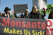 Demonstrators protest Monsanto.