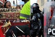Protesters and Police in Bogota Faceoff as Bullfighting Returns