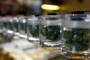 Medicinal marijuana buds in jars are pictured at Los Angeles Patients & Caregivers Group dispensary in West Hollywood, California U.S. on Oct. 18, 2016.
