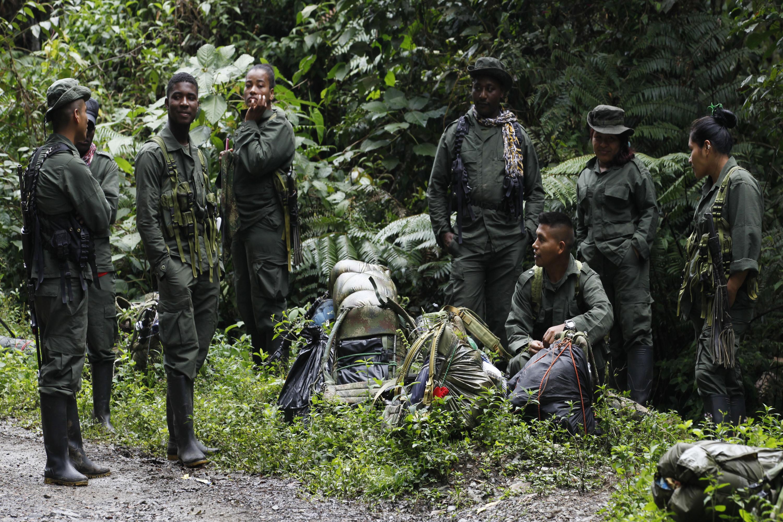 Camino a la paz: FARC-EP está a las puertas del desarme en Colombia
