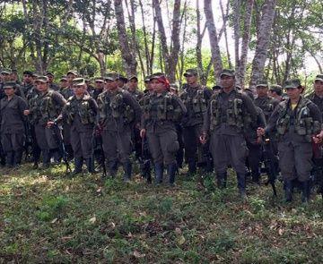 Perfilan hoja de ruta sobre proceso de desarme de las FARC-EP