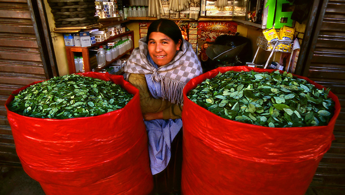 Bolivia explicará ley de la coca a la comunidad internacional