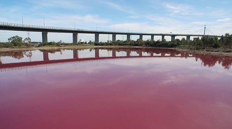 Las algas que crecen en la capa salina en el fondo de lago producen el pigmento rojo (betacaroteno). Foto:Facebook Parks Victoria