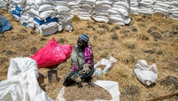 A woman collects grains left on the ground after food distribution in Ganyiel, South Sudan.