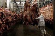 A worker arranges slaughtered cattle in the freezing room in the Marfrig Group slaughter house in Promissao, 500 km northwest of Sao Paulo, Oct. 7, 2011.